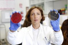 La investigadora Raquel Abad, ayer, en el laboratorio del Instituto de salud Carlos III donde se analizan las cepas de listeria.