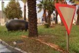 Un fotograma del vídeo del hipopótamo supuestamente en Murcia.