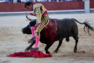 Arturo Macías es prendido del muslo derecho por el pitón izquierdo del primer toro de Pallarés, el pasado domingo, en la Monumental de Las Ventas.