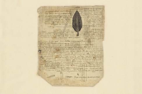 En el folio 197verso del Códice Atlántico Da Vinci escribe sobre la gravedad de las hojas