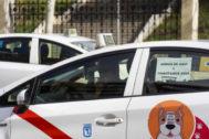 El taxi de Madrid se rinde al precio cerrado y la precontratación