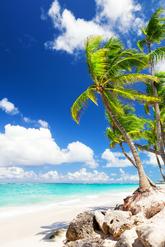 Tumbarse en una playa paradisíaca, preparar un ron al atardecer,...