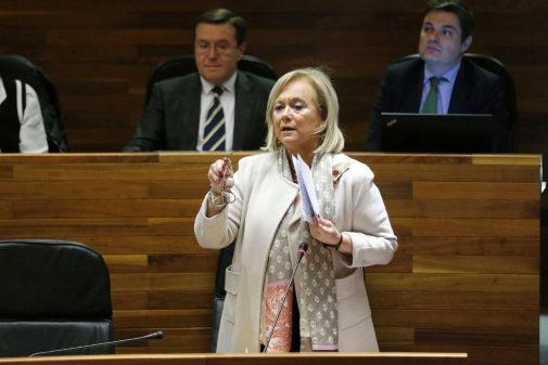 Mercedes Fernández, durante una de sus intervenciones en la Junta...