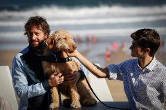El director Daniel Sánchez Arévalo y los actores Oveja (el perro) y Biel Montero.