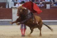 Ceñida bernadina de Miguel Ángel Perera al bravísimo 'Portugués' de la ganadería de Núñez del Cuvillo durante el final de una faena memorable.