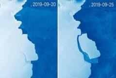 Las imágenes captadas por un satélite de la flota Sentinel muestran el desprendimiento de la masa de hielo