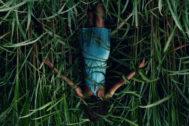 'In the Tall Grass', el filme que inaugura hoy el Festival de Sitges.