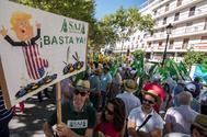 Agricultores, cooperativistas, entamadores y envasadores de aceituna de mesa protestan en Sevilla el año pasado contra los aranceles de EEUU. EFE