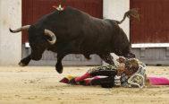 Manuel Escribano fue cogido sin consecuencias por el tercer toro de Adolfo Martín a porta gayola.