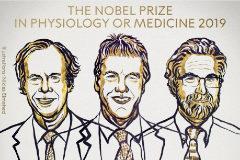 Kaelin, Ratcliffe y Semenza, en una imagen distribuida por el Instituto Karolinska.