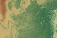 Cultivos ancestrales mayas tuvieron un impacto negativo en bosques tropicales