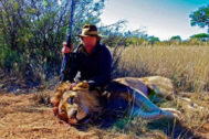 León de categoría tres, según los estándares de esta empresa de safaris.