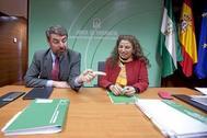 Vicente Fernández y María José Asensio, en una comparecencia durante el concurso minero.