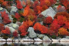 Los lugares más impresionantes para disfrutar del otoño