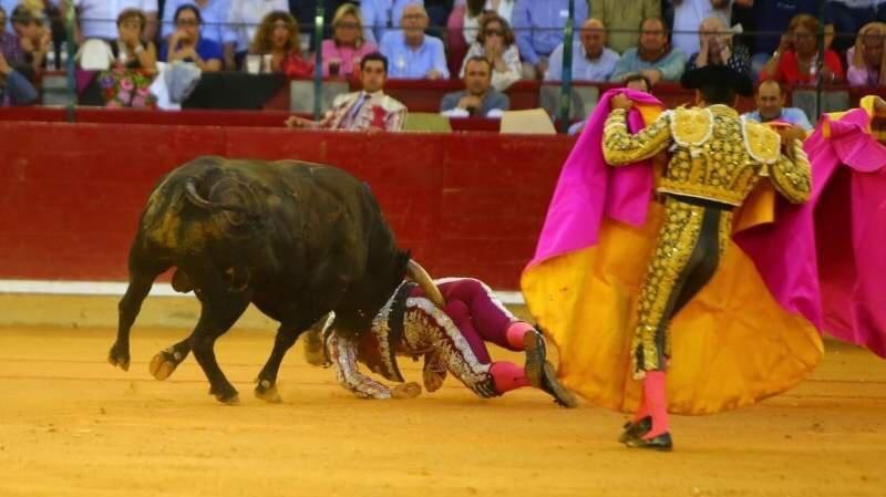 La cogida de Mariano de la Viña bilaketarekin bat datozen irudiak