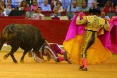 La larga madrugada de Mariano de la Viña: la cornada posterior alcanza la cavidad abdominal