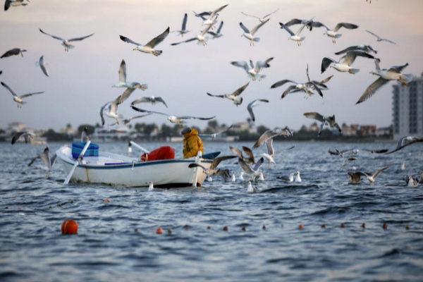 Pesca tradicional en La Manga del Mar Menor