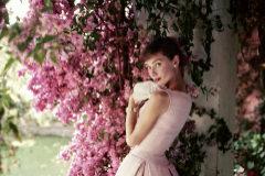 Exposición de Norman Parkinson en la Fundación Barrié. Audrey Hepburn vestida de Givenchy para 'Glamour Magazine' en junio de 1955.