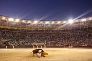 Las Ventas roza el millón de espectadores en 2019