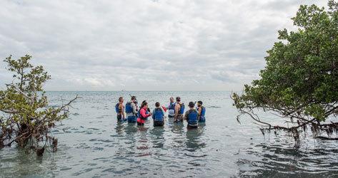 Ésta es una de las mejores de Florida para el 'snorkel'.