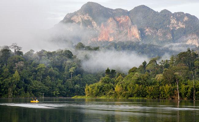 En las entrañas de Khao Sok, uno de los bosques lluviosos más antiguos del planeta