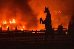 A sculpture of a horse is seen in the foreground as a wind-driven <HIT>fire</HIT> burns a structure on a farm during the Kincade <HIT>fire</HIT> in Windsor, <HIT>California</HIT> on October 27, 2019. - <HIT>California</HIT>'s governor declared a state-wide emergency on October 27 as a huge wind-fueled blaze forced evacuations and massive power blackouts, threatening towns in the famed Sonoma wine region. (Photo by Philip Pacheco / AFP)