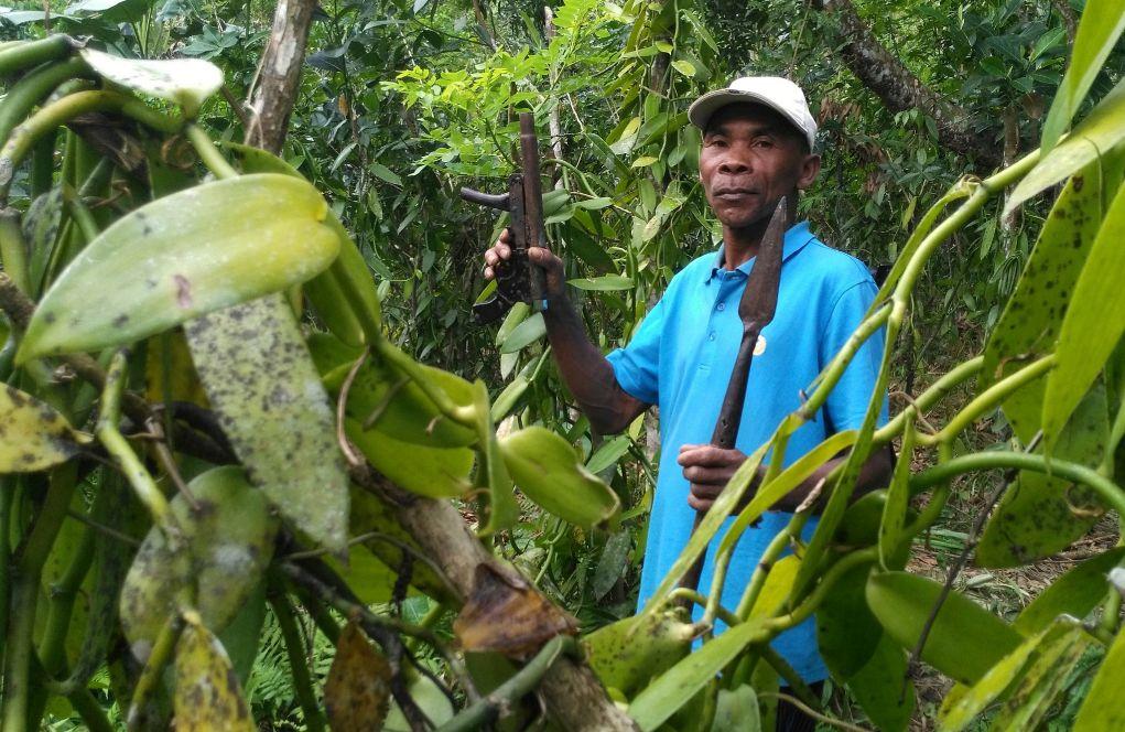 <HIT>Vanilla</HIT> farmer Jao Nasaina holds a spear and a handmade gun...
