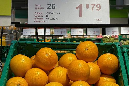 Cítricos procedentes de Sudáfrica en el expositor de un supermercado.