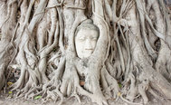 La misteriosa cabeza de Buda en un árbol y otras joyas de Ayutthaya, la ciudad perdida de Tailandia
