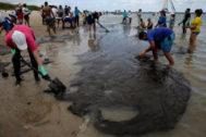 Voluntarios ayudan a eliminar manchas de petróleo en la costa brasileña.