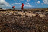 Voluntarios retiran crudo en la playa de Itapuama, en Cabo de Santo Agostinho.