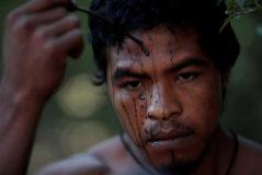 Paulo Paulino Guajajara, asesinado de un tiro por madereros ilegales.