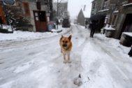 La primera nevada del otoño ha dejado una capa de hasta 10 centímetros en el municipio lucense de Pedrafita do Cebreiro.
