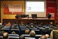 La profesora Amaya Bravo durante su intervención en las jornadas celebradas en la Universidad de Alicante,