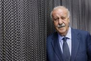 Vicente del Bosque, uno de los reservistas de honor de Defensa.