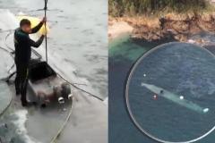 La Guardia Civil remolca a puerto el narcosubmarino hundido en Galicia con 3.000 kilos de cocaína