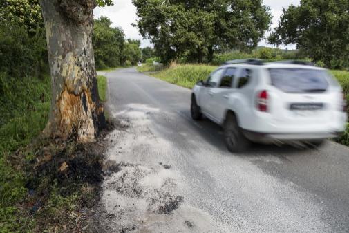 Imagen de archivo de un vehículo en una carretera.