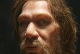 El Homo sapiens no causó la extinción de los neandertales