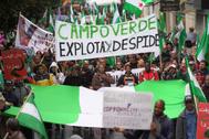 """Participantes en la manifestación convocada este domingo en Córdoba por la plataforma ciudadana """"Andalucía Viva"""", en defensa de los derechos de los andaluces."""
