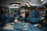 Varios sanitarios realizan un trasplante de hígado.