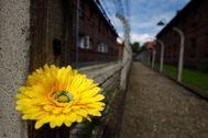 El campo de concentración de Auschwitz, en Polonia.