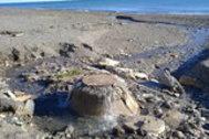 Aguas residuales se vierten al mar en una playa de Rincón de la Victoria (Málaga).