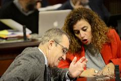 El vicepresidente Juan Pedro Yllanes junto a la portavoz del Govern esta semana en el Parlament. J. SERRA