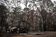 Un autobús calcinado en los incendios de Australia.