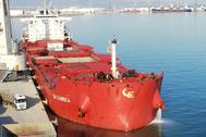 El buque ha recalado en la terminal de graneles Portsur Castellón SA.