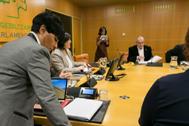Una reunión de la Ponencia de Autogobierno en el Parlamento Vasco.