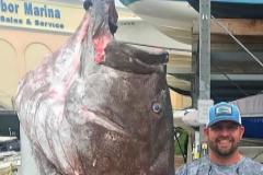 El pescador Jason Boyll, con el mero gigante que capturó en Florida.