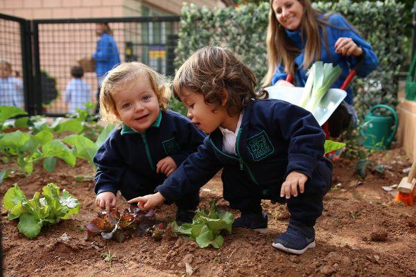Alumnos de Baby Caxton cuidan a diario su huerto ecológico.