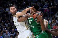 GRAF9794. MADRID.- El alero del Zalgiris Kaunas Zach Leday (d) protege un balón ante <HIT>Rudy</HIT> <HIT>Fernández</HIT>, del Real Madrid, durante el partido de la Euroliga de baloncesto disputado esta noche en el WiZink Center.