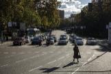 El Paseo del Prado, en la ciudad de Madrid